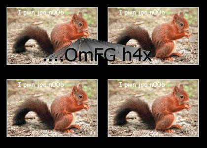 Squirrel H4x