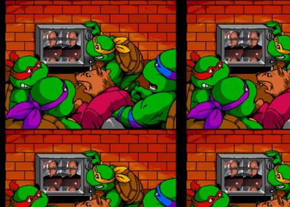 Your the Mutant Ninja Turtle Now Dog (YTMNT)
