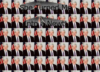 A Newt Gingrich image macro