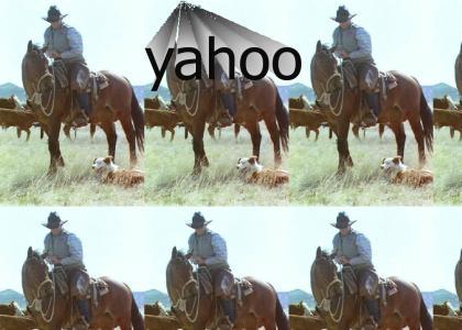 cowboys love yahoo