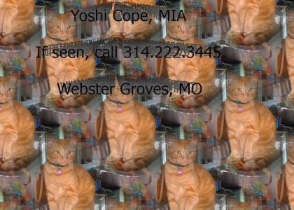 Yoshi, Come Home