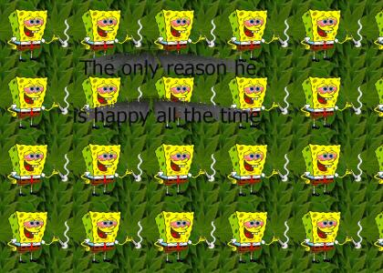 All Spongebob does....