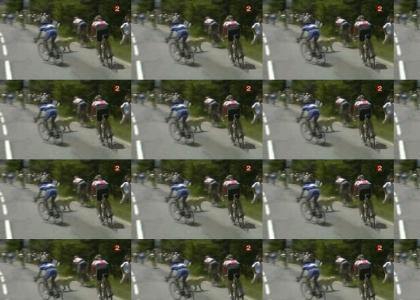 Tour De France OMG!