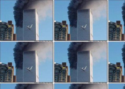 terrorists win