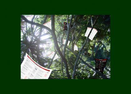 YTMNDs in the treetops