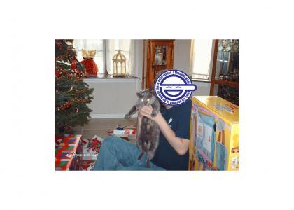 A fluffycat Christmas