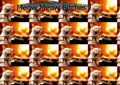 Bodom MEOW MEOW