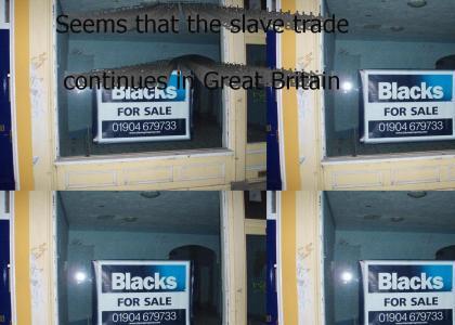 Blacks For Sale!