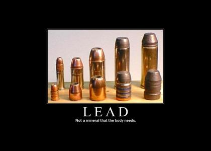 Life Lessons # 12: Lead