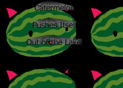 catermelon