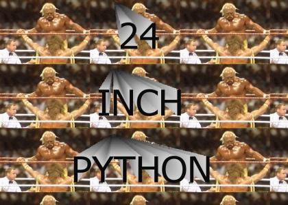 TRY MY 24 INCH PYTHON