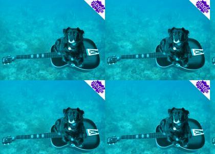 PTKFGS: dogonaguitarunderwater (update)