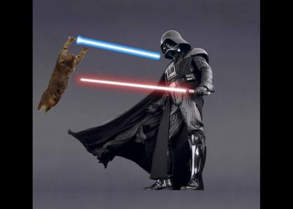 Gravity Cat is Not Amused by Lightsaber Duels