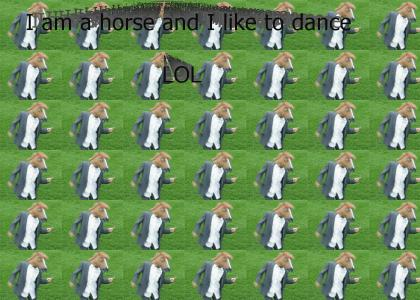 Horses like to dance too!