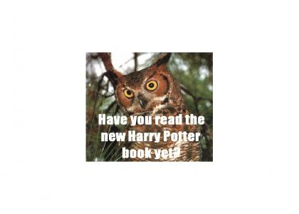 The O/YA RLY owls discuss Harry Potter spoilers.