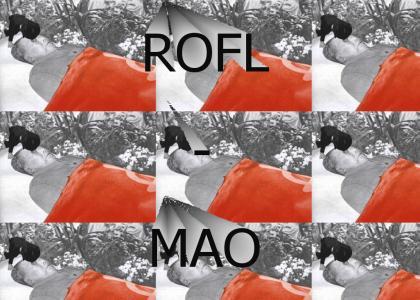ROFL-MAO