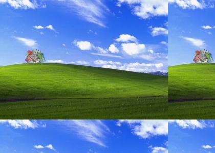 Katamari Windows XP