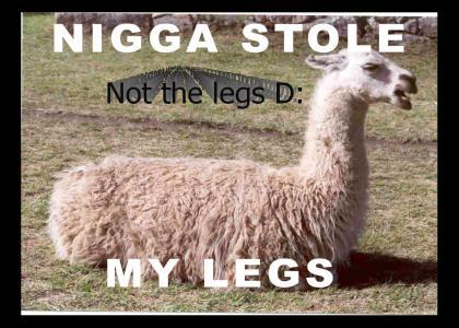 Nigga Stole My...