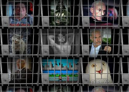 All good fads jailed!!