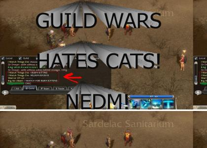 Guild Wars hates kittens!