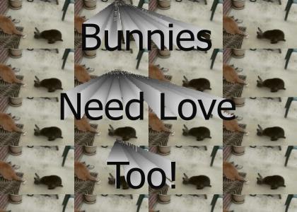 Horny Bunny!