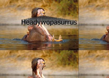 Headywopasurrus