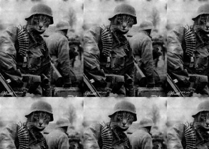 NEDM at War