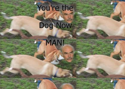 You're The Dog Now Man!