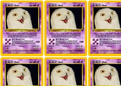 PokeMND - O RLY? Owl