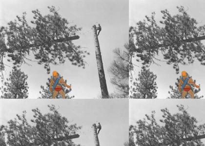 He-Man : Environmentalist