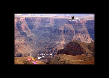 PSA Guy yells at you from across the Grand Canyon