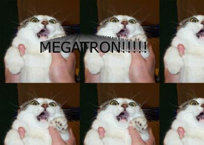 MEGATRON!!!