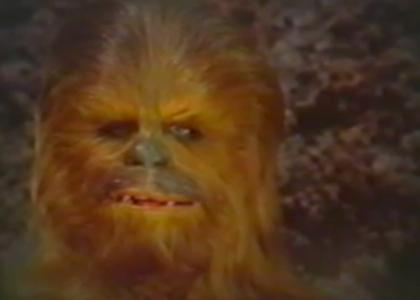 Chewbacca Stares into Your Soul