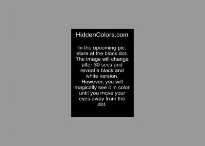 See Colors in Black & White Photos