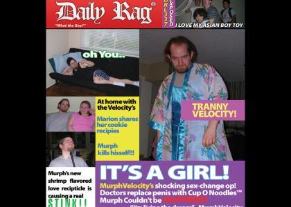 MURPHVELOCITY - TRANNY REVELATIONS (DailyRag™)