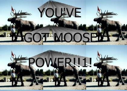 YOU'VE GOT MOOSE POWER!!1!