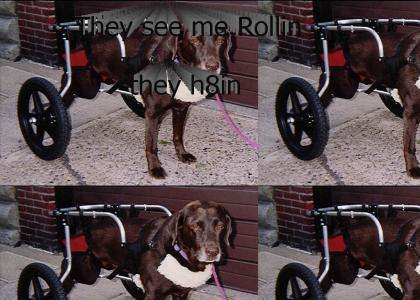 Ridin dirty doggy style