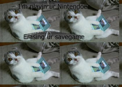 Nintendo DS Cat!