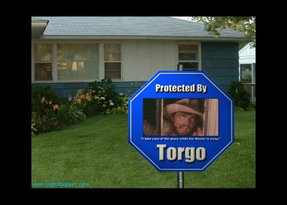 Torgo Home Security System (MST3K)