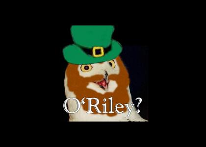 O'Riley?