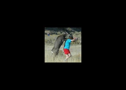 Deer Rapist!!!