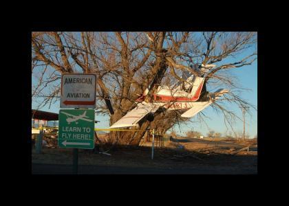 Plane vs Tree