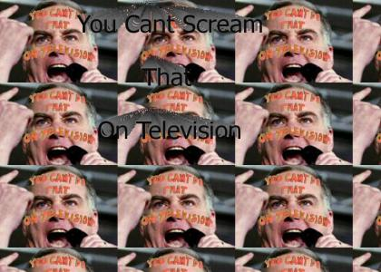 You Can't Scream That On Television