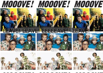 mooooove! (the band)