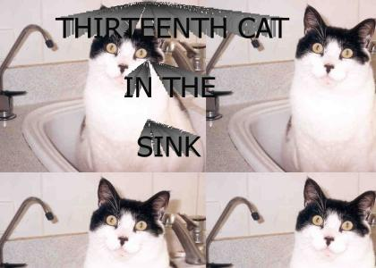 THIRTEENTH CAT IN THE SINK