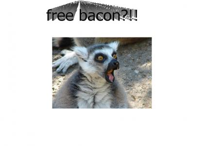 free bacon