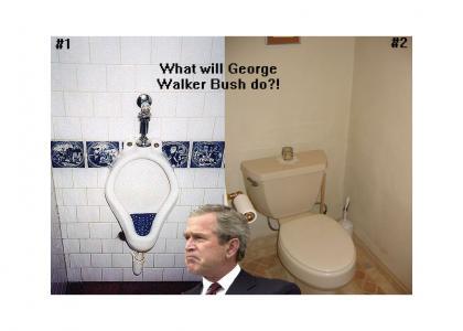 Bush faces critical decision