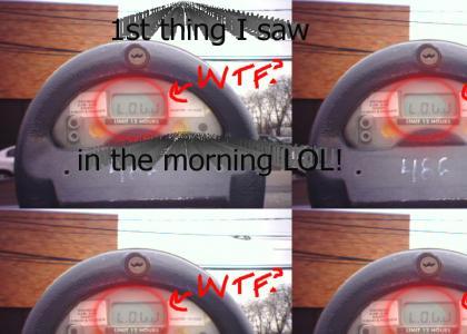 Parking Meter LAWL!