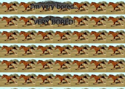 Can't break two legged horse' stride