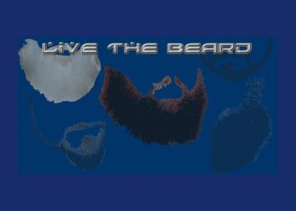 BEARDTMND: The Four Rules of Beard